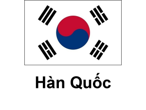 /files/images/flag-chau-a/dich-vu-visa-chau-a-souther-korea-300x225.png
