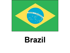 /files/images/flag-chau-my/dich-vu-visa-chau-my-Brazil-flag-300x225.png